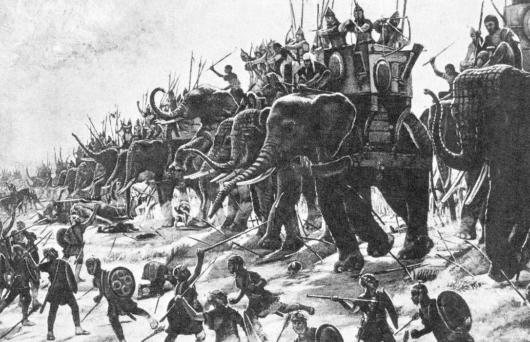 oo olifanten