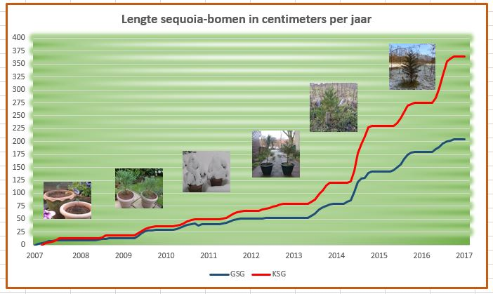sequoia lengte jan 2017