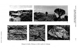 ishamgo opgravingsgebied 2