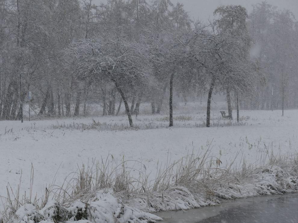 0 sneeuw b