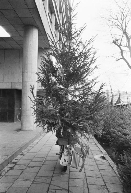 00000 1966 kerstboom