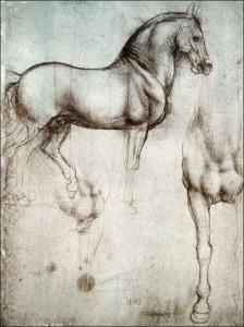 20 leonardo paard studie
