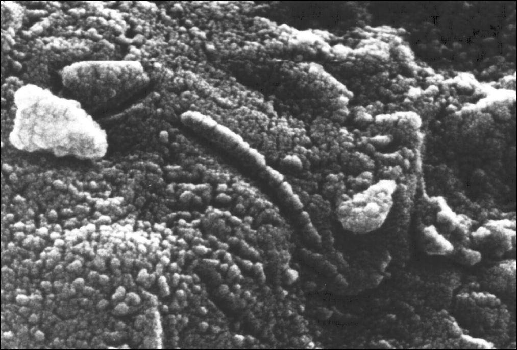 mars meteoriet 2