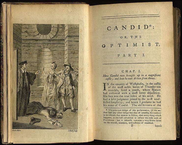 23 Leibniz voltaire boek