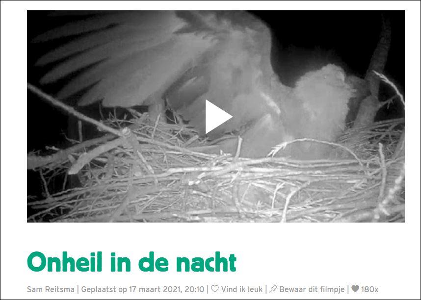 1 0 vogels camera 1